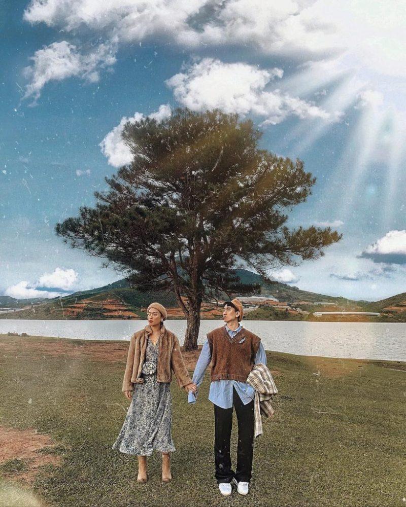 Cây thông cô đơn ngay cạnh hồ Suối Vàng là địa điểm chụp hình của nhiều du khách.