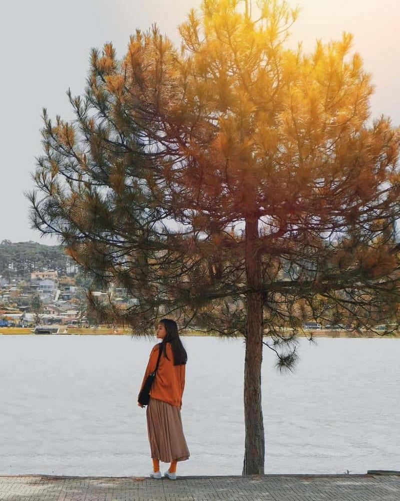 Hồ Xuân Hương thơ mộng cũng là điểm chụp hình lý tưởng cho mọi người.