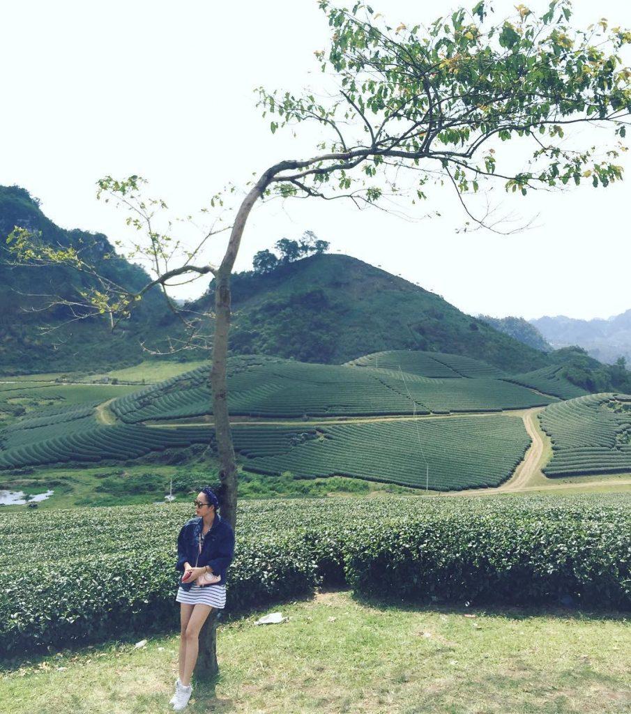 làng chè mộc châu