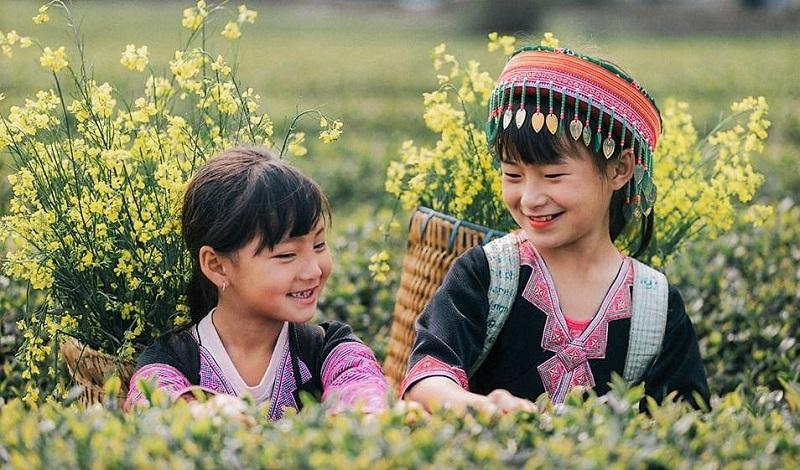 mùa hoa cải vàng trên cao nguyên mộc châu