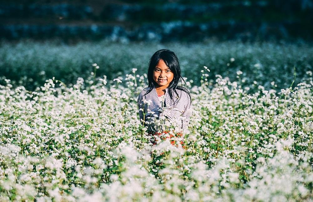 Em bé dân tộc giữa cánh đồng hoa tam giác mạch Hà Giang