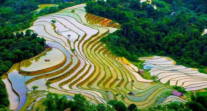 Ruộng bậc thang Hoàng Su Phì mùa nước đổ