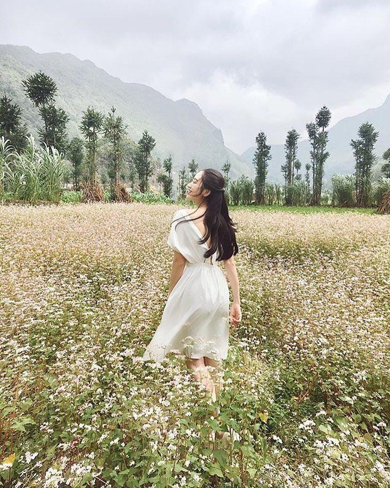 Cô gái mặc váy trắng giữa cánh đồng hoa tam giác mạch