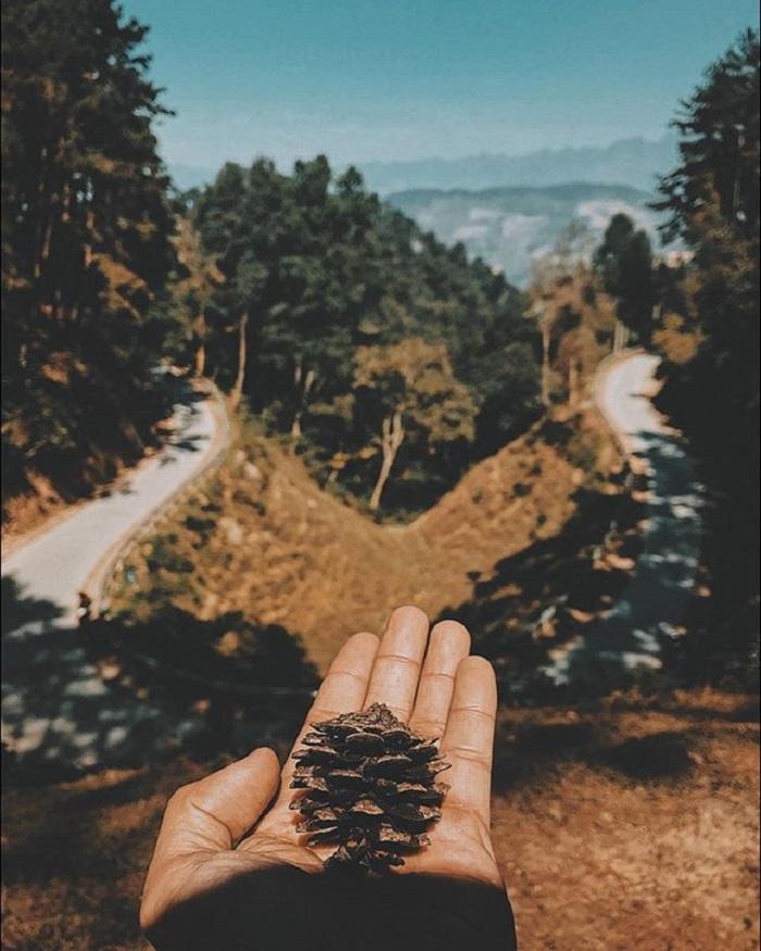 Cung đường di chuyển đến rừng thông Yên Minh