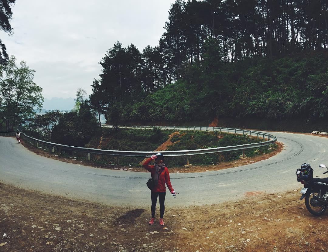 cung đường phượt đến rừng thông Yên Minh