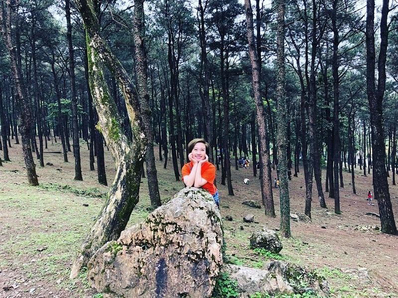Chụp ảnh trong rừng thông ở Ba Vì