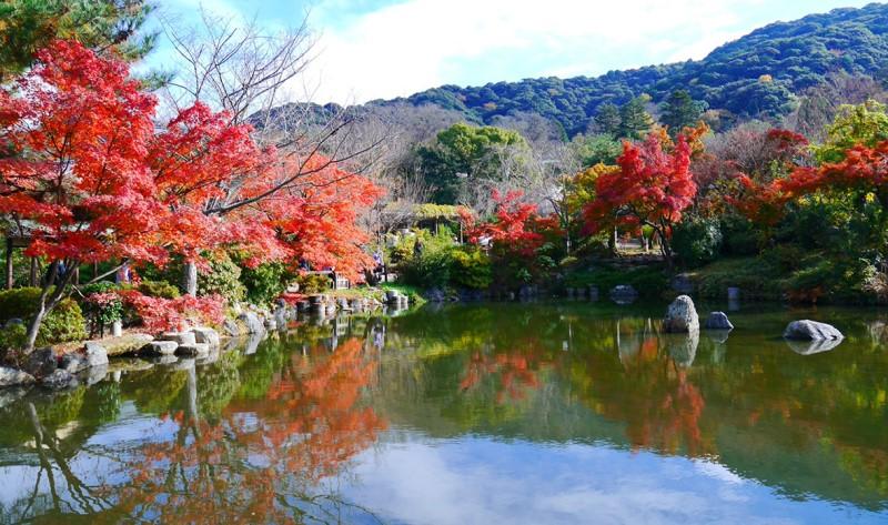 Công viên Marauyama (Marauyama Park)