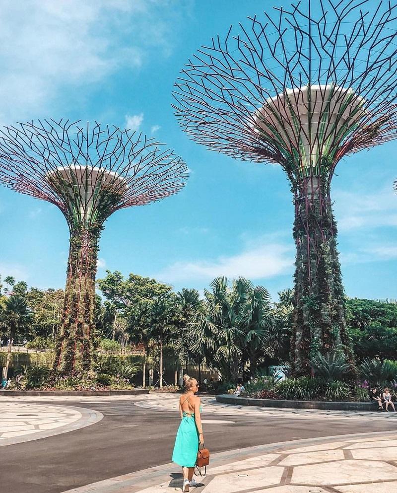 Những cây khổng lồ tại khu Supertree Grove