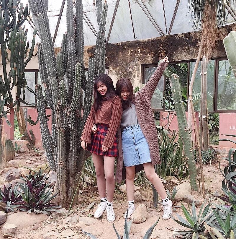 Đôi bạn chụp hình trong vườn xương rồng ở Ba Vì