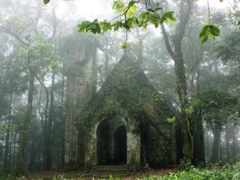 Nhà thờ đổ Ba Vì giữa rừng cây