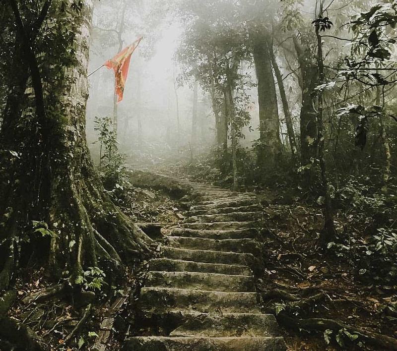 Bậc thang dẫn lên động Ngọc Hoa âm u chứa nhiều bí ẩn