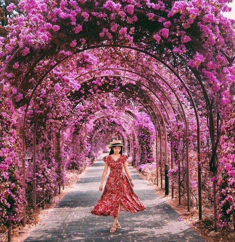 Diện váy họa tiết giữa khu vườn nhiều hoa tím