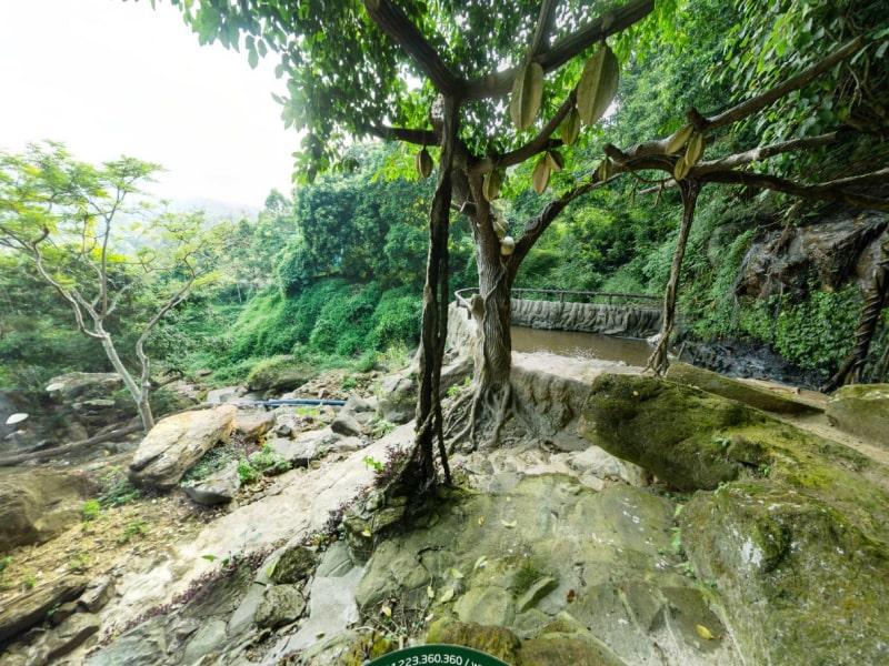 Không gian thiên nhiên xanh mát với hồ nước ở Thác Đa resort Ba Vì