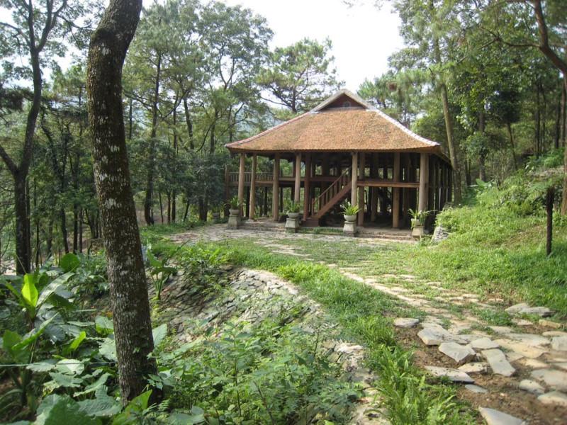 Ngôi nhà sàn bằng gỗ thoáng mát giữa rừng cây ở VQG Ba Vì Resort