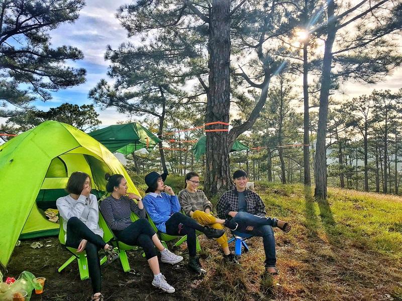 5 người ngồi trên ghế tổ chức cắm trại trong rừng thông Ba Vì