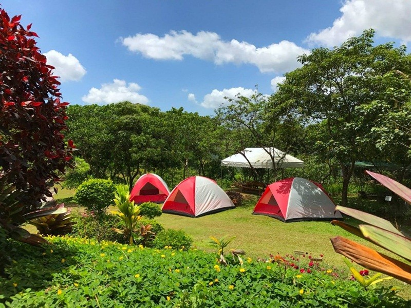 cắm trại ở ecopark