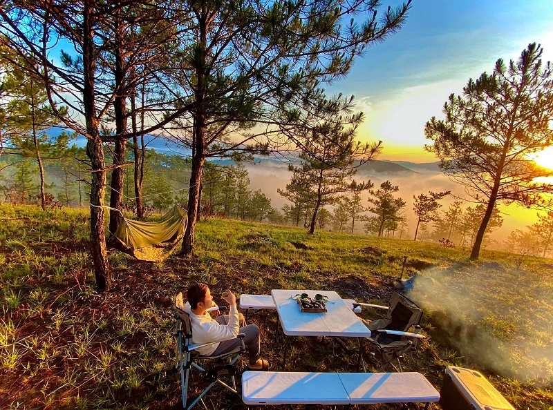Toàn cảnh cắm trại trong rừng thông Đà Lạt