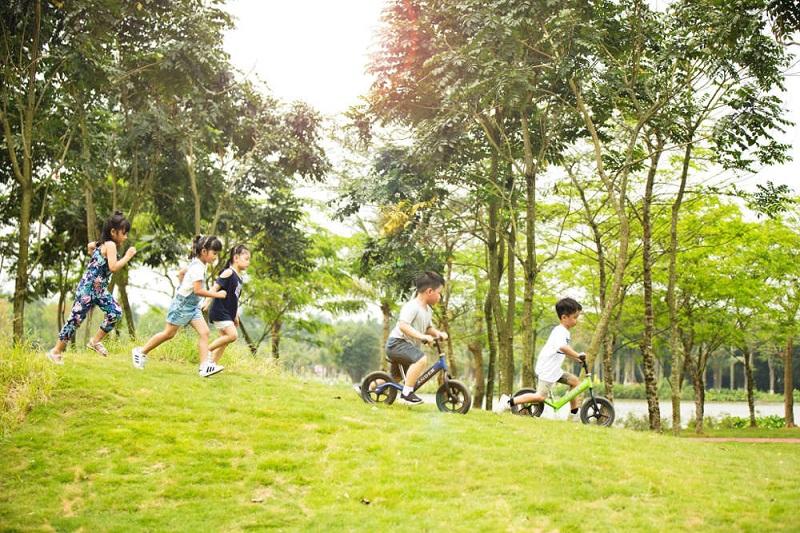 Các bé có thể thỏa thích vui đùa trên đồi cỏ