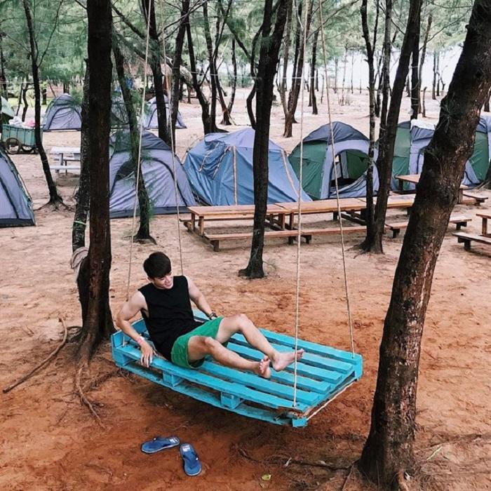 Các lều trại được đặt trong rừng dương xanh mát