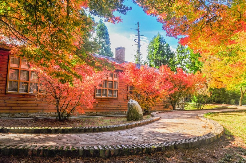 Trang trại Fushoushan Farm được nhuộm đỏ bởi những tán lá đỏ