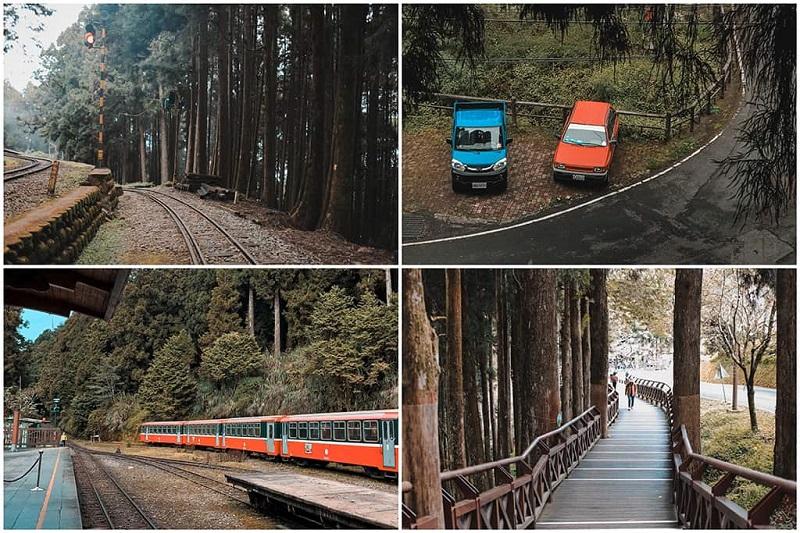 Bạn có thể khám phá khu du lịch núiAlishan bằng tàu hỏa hay đi bộ trên cầu gỗ tuyệt đẹp