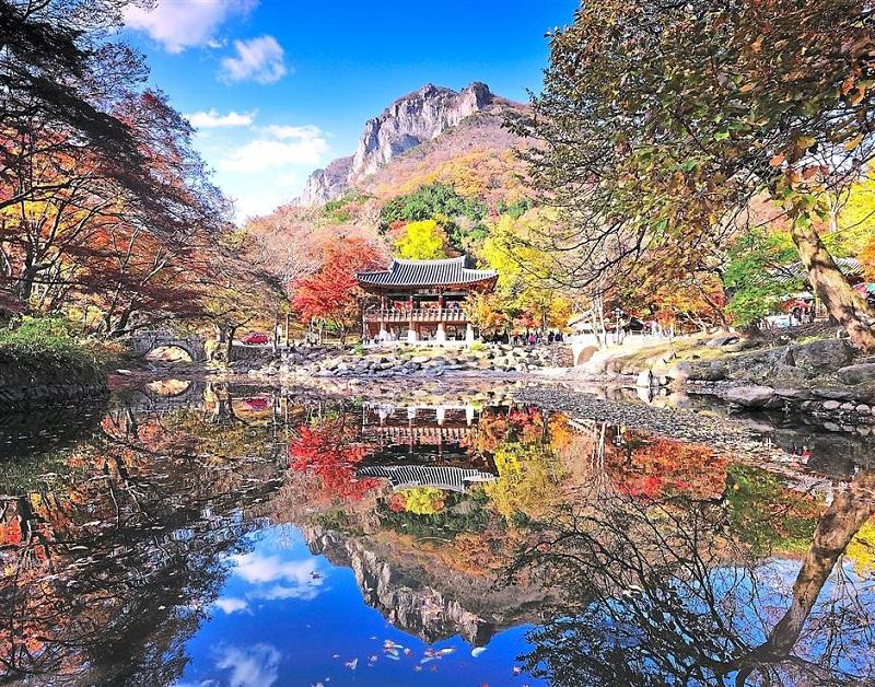Khung cảnh thơ mộng của mùa thu ở Đài Loan