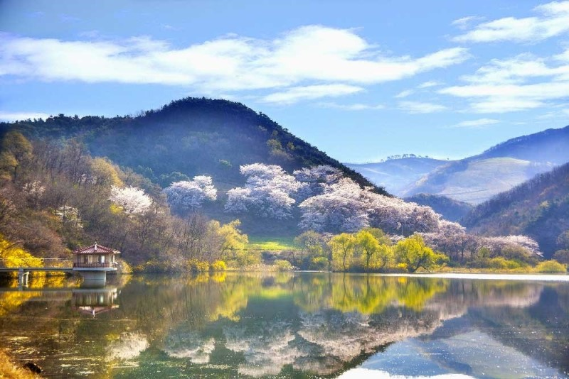 Quang cảnh mùa thu Hàn Quốc