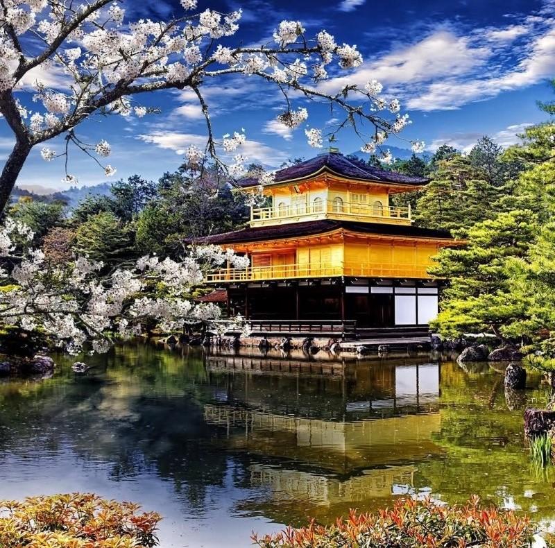 Khung cảnh yên bình thanh tịnh tại chùa Vàng với mặt hồ trong vắt