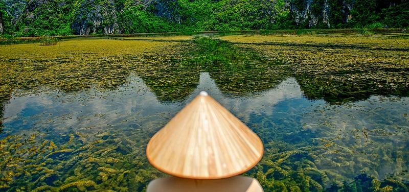 Thảm thực vật trong xanh tại đầm Vân Long