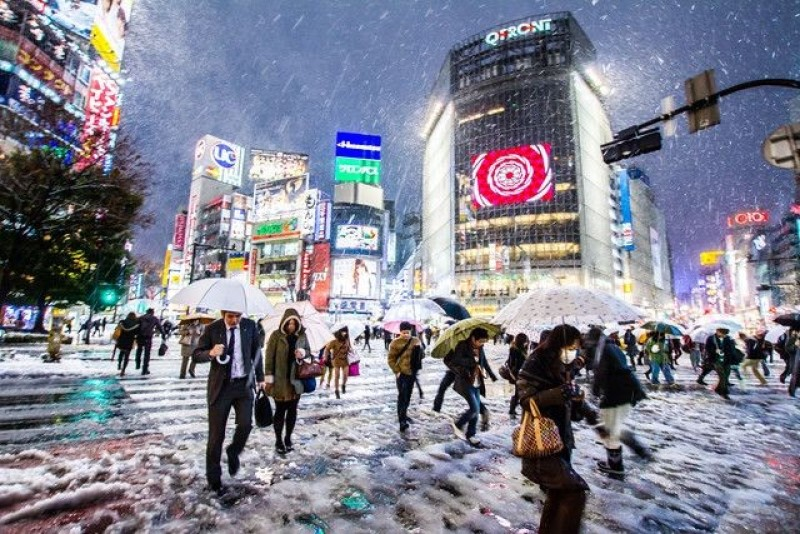 Thành phố Tokyo ngàu mưa lạnh giá