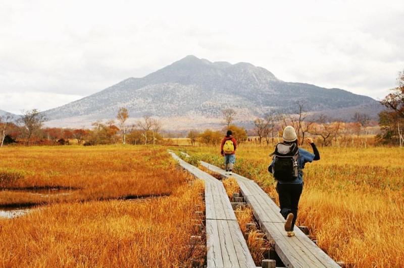 Vườn quốc gia Oze với biển cỏ màu vàng óng ả đung đưa