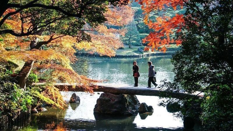 Khu vườn Rikugi với khung cảnh thơ mộng trong lành