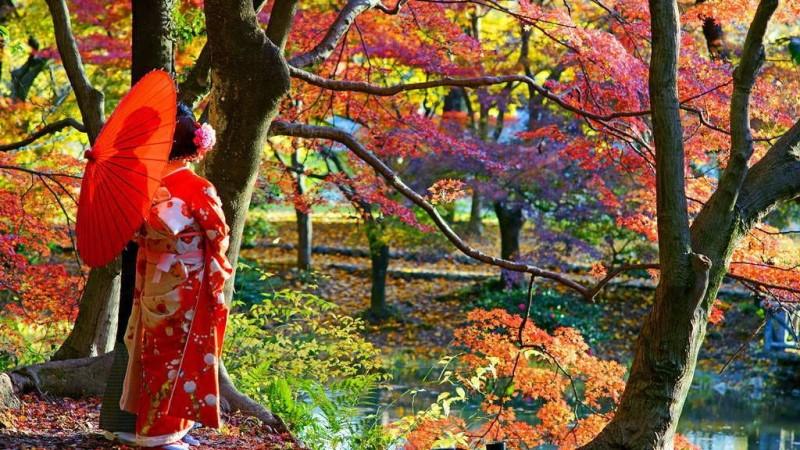 Khung cảnh tháng 11 tại Nhật Bản