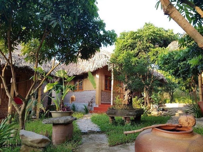 Lotus Field Homestay Ninh Bình có những căn bungalow view vườn