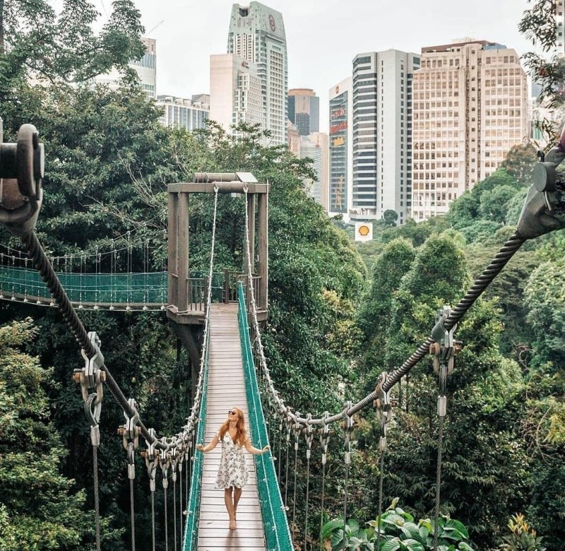 Cầu treo tại Thung lũng Danum, Sabah