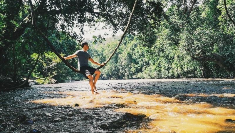 Rừng nhiệt đới Taman Negara