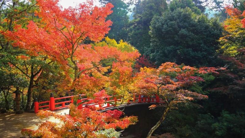 Top 35 địa điểm cảnh đẹp nhất nhật bản đáng du lịch