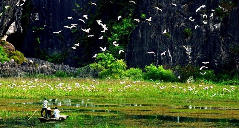 Đi thuyền ngắm Thung Chim