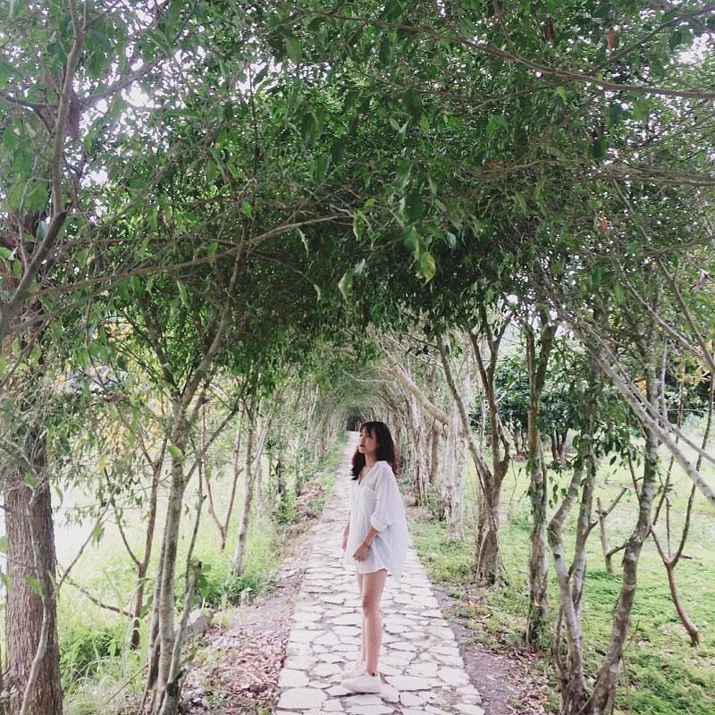 Khu vườn hoa quả tại Thung Nham