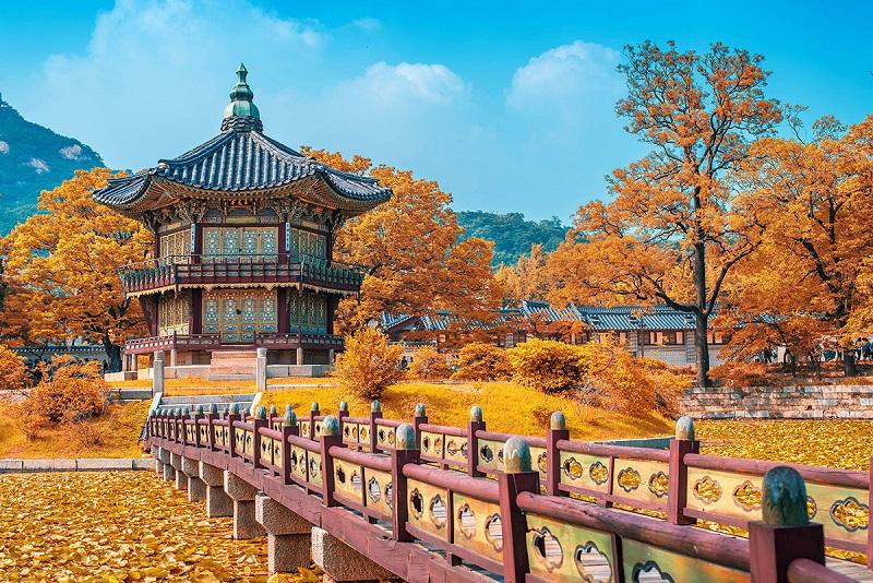 cung điện Changdeokgung ở Seoul ngập trong sắc vàng của mùa thu