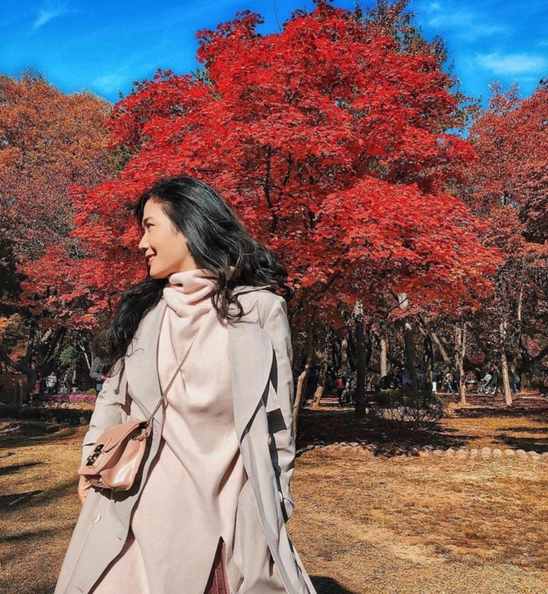 Mùa lá phong đỏ rực rỡ ở đảo Nami