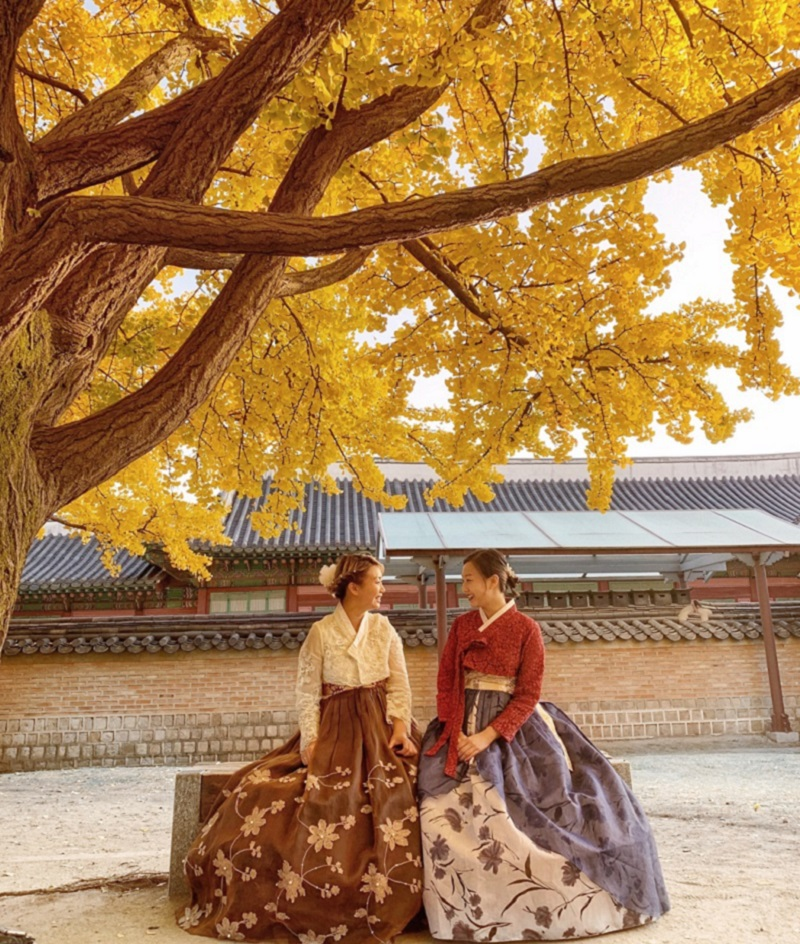 2 bạn gáu check in tại mùa thu lá vàng Hàn Quốc