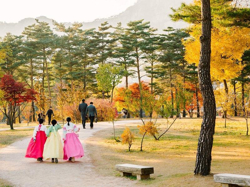 Khu vườn mùa thu tháng 10 Hàn Quốc