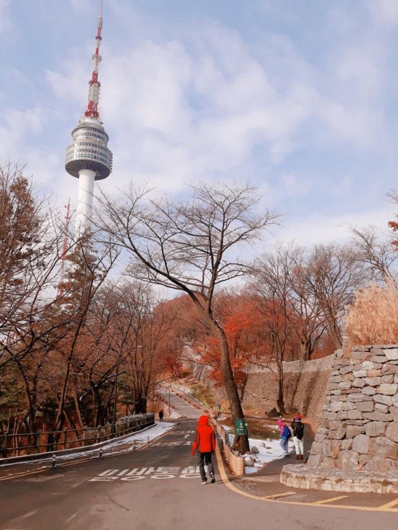 Công viên Namsan với những cành cây trơ trụi lá vào mùa đông