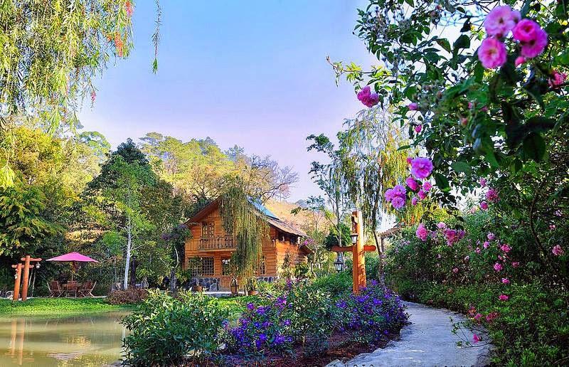 Quang cảnh ở Ma Rừng Lữ Quán