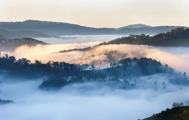 Núi rừng Đà Lạt được bao phủ bởi sương mù