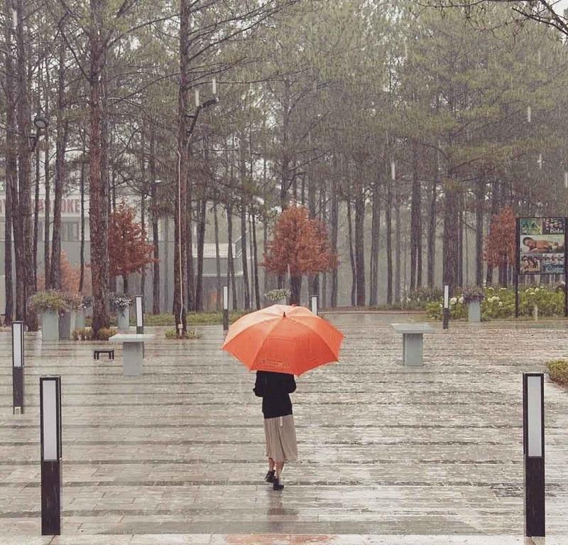 Mùa mưa ở thành phố Đà Lạt