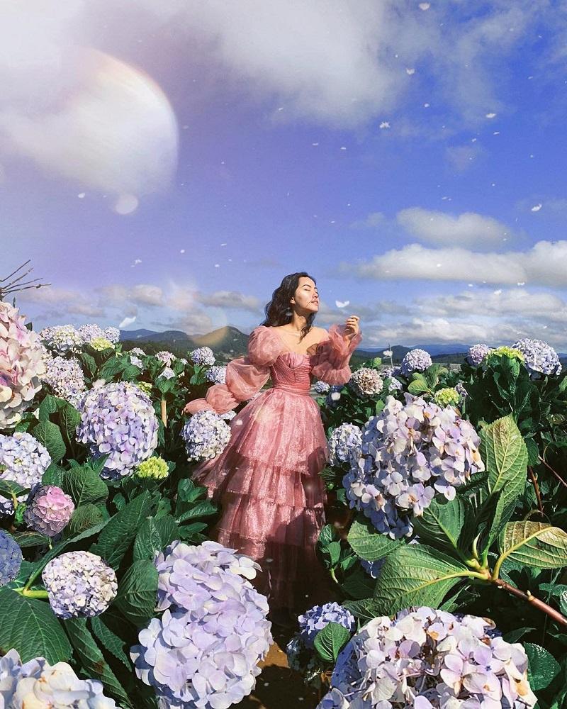 Váy voan với nhiều lớp bồng bềnh màu hồng khiến cô nàng trở thành một bông hoa khoe sắc cùng vườn cẩm tú cầu.