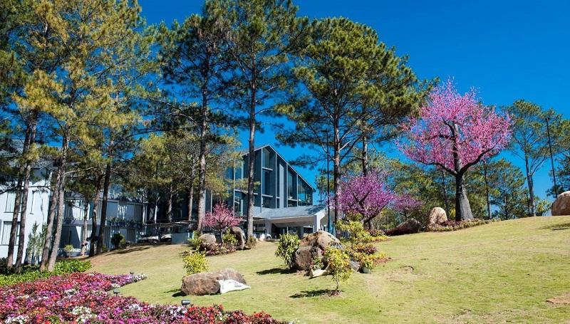 Khách sạn Đà Lạt ngập tràn sắc hoa vào mùa xuân