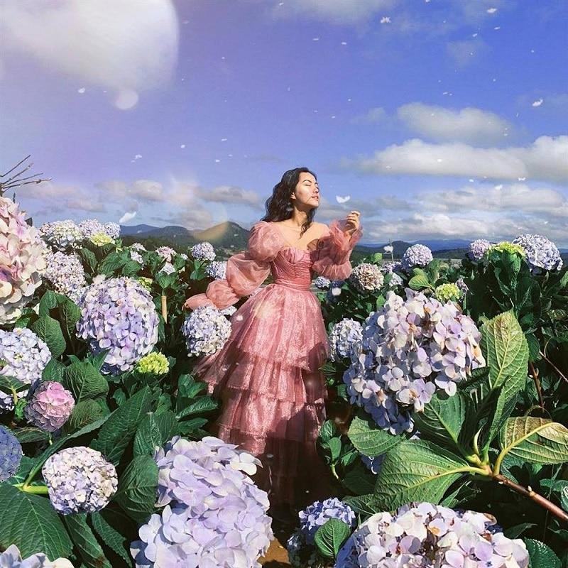 Hoa cẩm tú cầu bắt đầu nở rộ vào tháng 4 ở Đà Lạt
